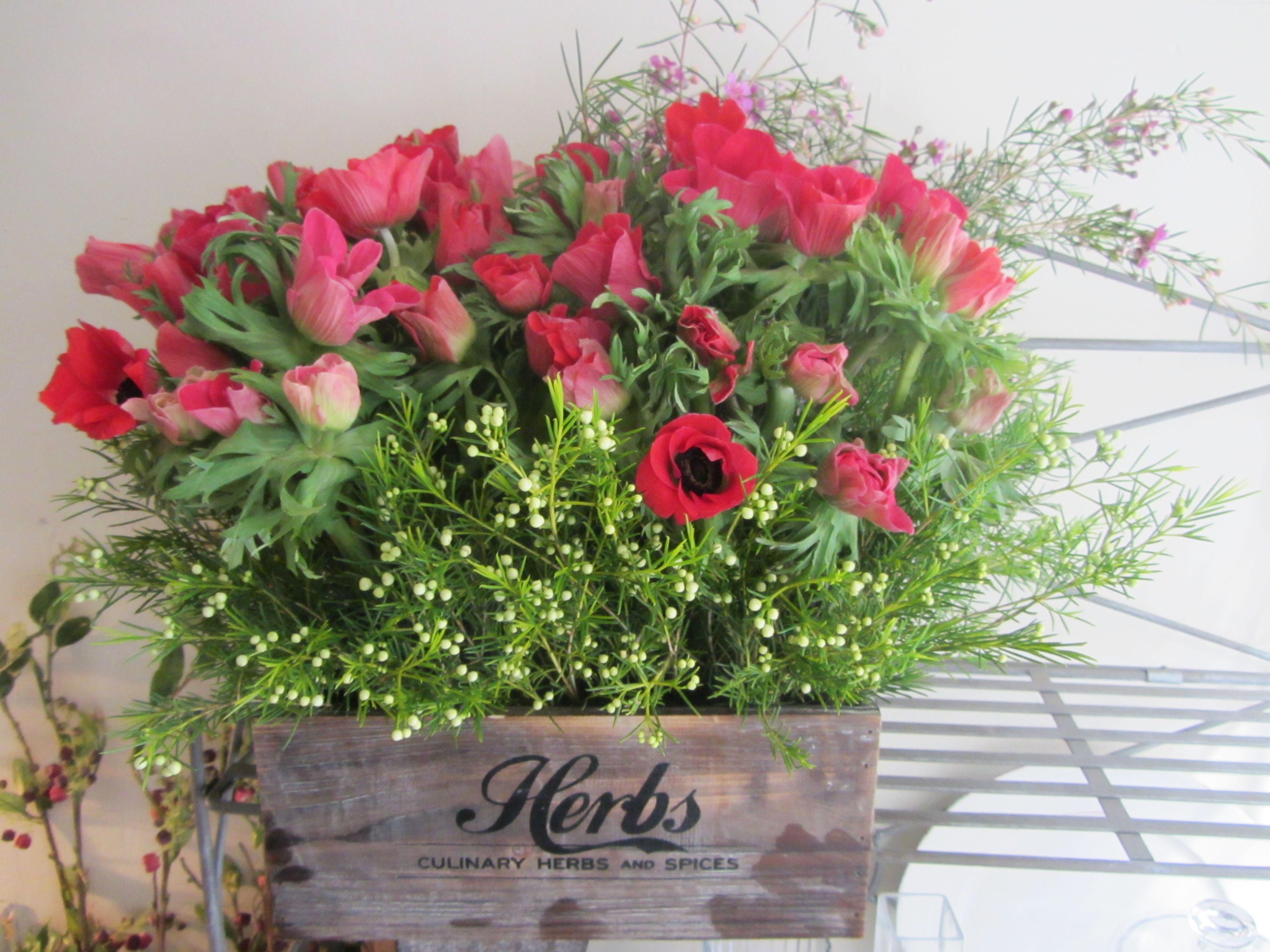 flores distintas | El blog de Fiore