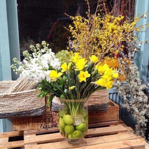 jarrón forsitia, narcisos, alhelies y limas
